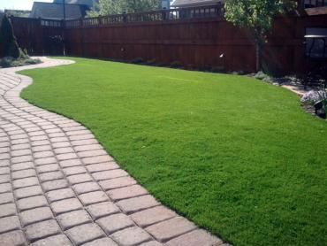 Lawn Services Woodbranch, Texas Dog Pound, Backyard Makeover artificial grass