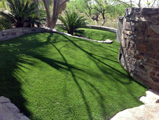 Artificial Grass Photos: Outdoor Carpet Highlands, Texas Dog Grass