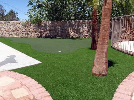 Artificial Grass Photos: Outdoor Carpet Pinewood Estates, Texas Home Putting Green, Backyard Ideas