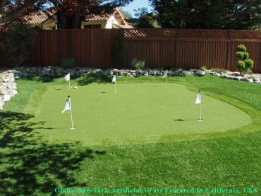 Outdoor Carpet Piney Point Village, Texas Lawns, Backyard Ideas artificial grass