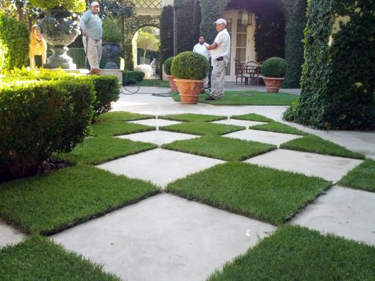 Artificial Grass Photos: Outdoor Carpet Sealy, Texas Gardeners, Pavers