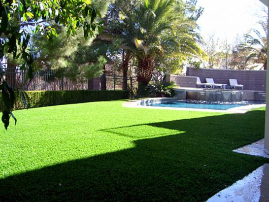 Artificial Grass Photos: Plastic Grass Kendleton, Texas Garden Ideas, Pool Designs