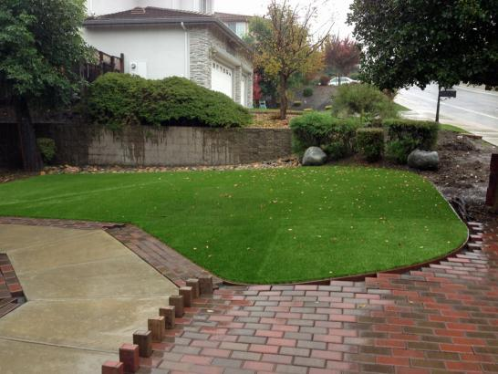 Artificial Grass Photos: Plastic Grass Shoreacres, Texas Landscape Photos, Backyards