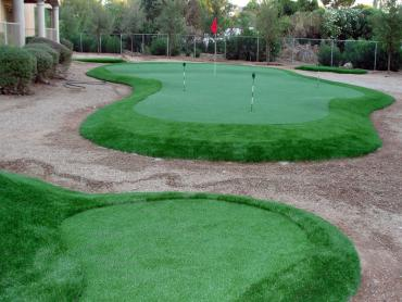 Plastic Grass Sugar Land, Texas How To Build A Putting Green, Backyard Landscape Ideas artificial grass