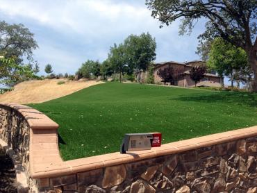 Artificial Grass Photos: Plastic Grass Uhland, Texas Landscaping, Front Yard Landscape Ideas
