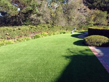 Artificial Grass Photos: Synthetic Grass College Station, Texas Landscape Photos, Front Yard Landscape Ideas