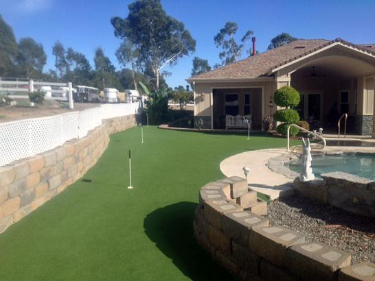 Artificial Grass Photos: Synthetic Grass Cost Bailey Prairie, Texas Putting Green Turf, Backyard Landscape Ideas