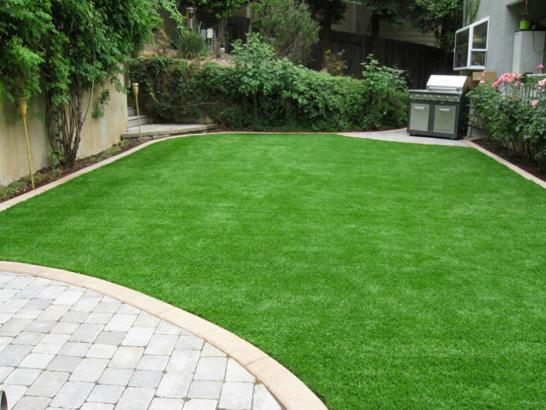 Artificial Grass Photos: Synthetic Grass Cost Boling, Texas City Landscape