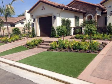 Synthetic Grass Cost Bunker Hill Village, Texas Roof Top, Landscaping Ideas For Front Yard artificial grass