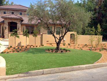 Synthetic Grass Cost Surfside Beach, Texas Roof Top, Front Yard Landscaping artificial grass