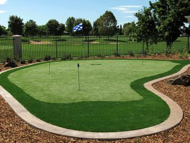 Artificial Grass Photos: Synthetic Grass Hemphill, Texas Home And Garden, Backyard Landscaping