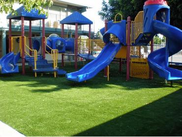 Artificial Grass Photos: Synthetic Grass Manchaca, Texas Landscape Ideas, Commercial Landscape