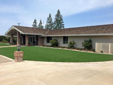 Artificial Grass Photos: Synthetic Grass Navasota, Texas Design Ideas, Front Yard Landscape Ideas
