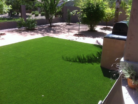 Artificial Grass Photos: Synthetic Grass Teague, Texas Rooftop,  Dog Kennels