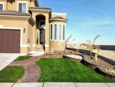 Artificial Grass Photos: Synthetic Lawn Pecan Grove, Texas Landscape Design, Landscaping Ideas For Front Yard