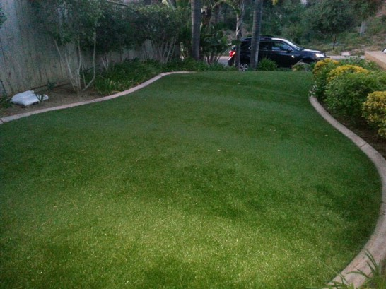 Artificial Grass Photos: Synthetic Lawn Round Rock, Texas Gardeners, Front Yard Design