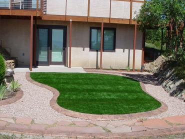 Artificial Grass Photos: Synthetic Turf Alvin, Texas Landscape Photos, Front Yard Landscaping