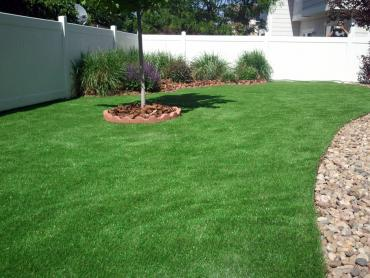 Synthetic Turf Barrett, Texas Backyard Playground, Backyard Design artificial grass