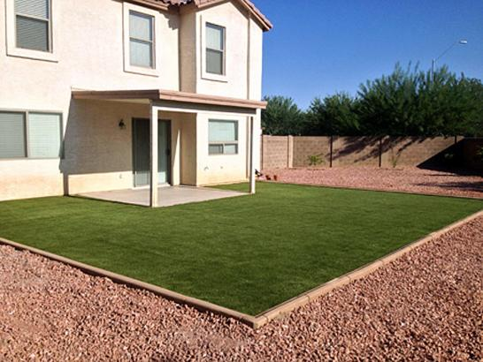 Synthetic Turf Franklin, Texas Landscape Photos, Backyard Makeover artificial grass