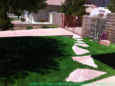 Artificial Grass Photos: Synthetic Turf Hudson, Texas Dog Running, Pavers
