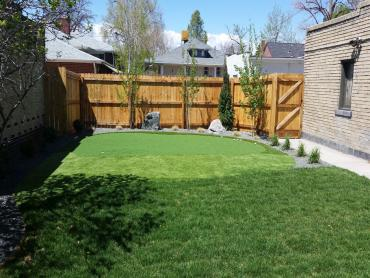 Artificial Grass Photos: Synthetic Turf Magnolia, Texas Design Ideas, Small Backyard Ideas