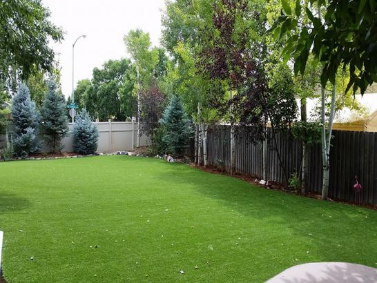 Artificial Grass Photos: Synthetic Turf Pinehurst, Texas Landscaping, Backyard Makeover