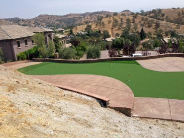 Artificial Grass Photos: Synthetic Turf Quintana, Texas Landscape Design, Backyard Ideas