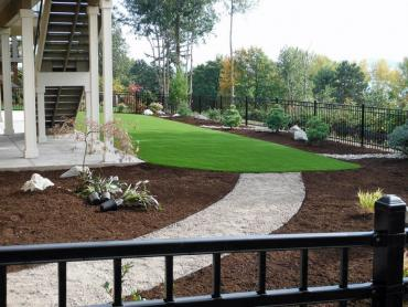 Artificial Grass Photos: Synthetic Turf Supplier Clear Lake Shores, Texas Landscape Design, Backyard Landscaping Ideas