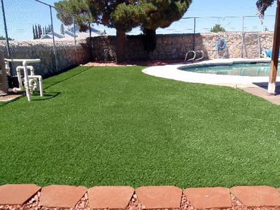 Artificial Grass Photos: Synthetic Turf Supplier Fannett, Texas Gardeners, Swimming Pool Designs