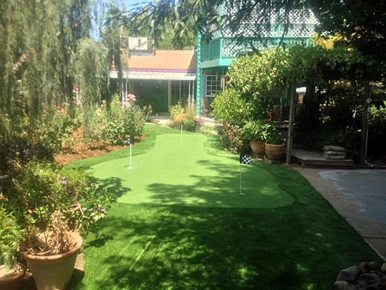 Artificial Grass Photos: Synthetic Turf Supplier Plum Grove, Texas Landscape Ideas