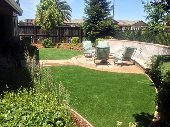 Artificial Grass Photos: Synthetic Turf Supplier Simonton, Texas Lawns, Small Backyard Ideas