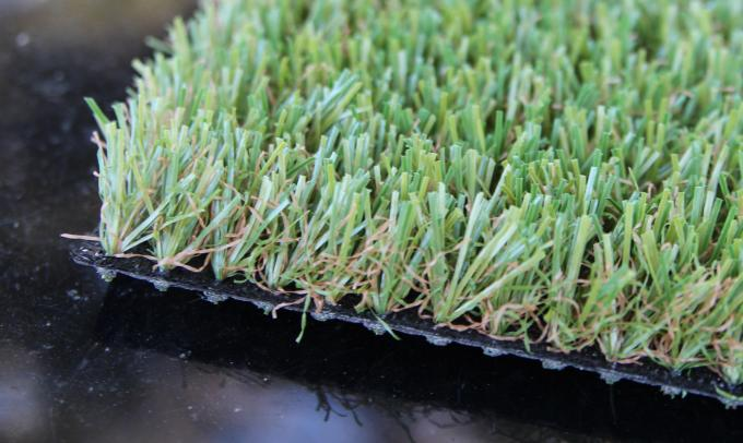 Residential Pet Grass
