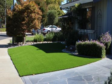 Artificial Grass Photos: Turf Grass Robinson, Texas Landscape Photos, Front Yard
