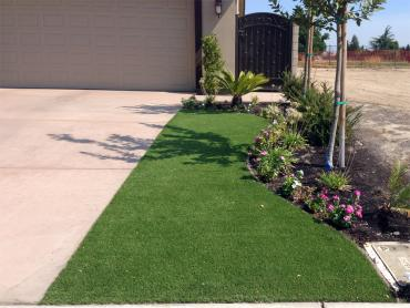 Artificial Grass Photos: Turf Grass Victoria, Texas Roof Top, Front Yard Ideas