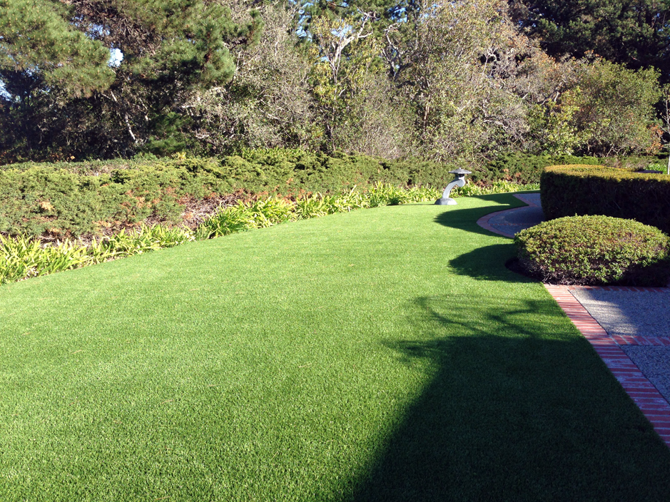 Artificial Grass: Synthetic Grass College Station, Texas Landscape Photos, Front Yard Landscape Ideas