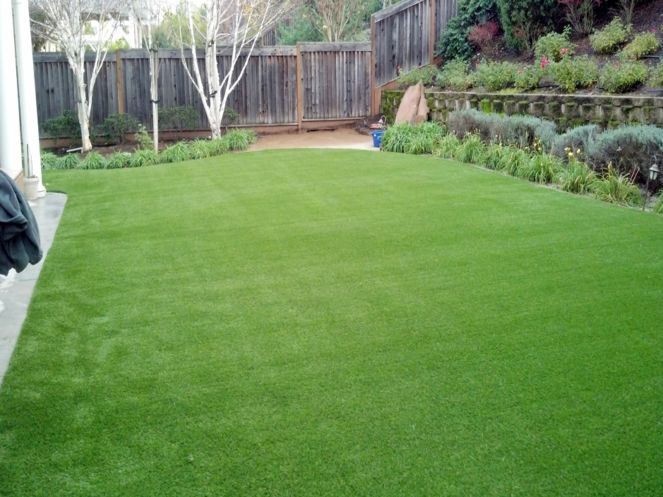 synthetic grass cost lexington texas lawn and garden backyard designs - Synthetic Grass Cost
