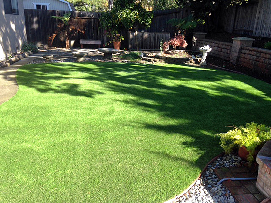 Artificial Grass: Synthetic Lawn Newton, Texas Dog Park, Backyard Design
