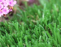 Outdoor Artificial Turf